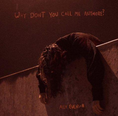 """Why Don't You Call Me Anymore?"" A Review"